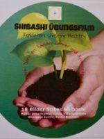 "DVD ""Shibashi Übungsfilme"" - 18 Bilder Stilles Shibashi"