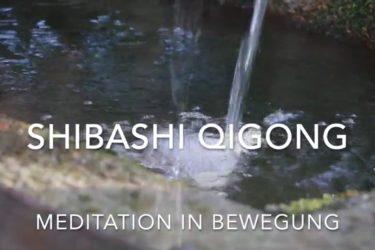 Lehrgang Shibashi Qi Gong - Meditation in Bewegung